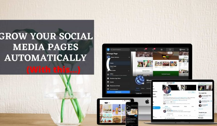 grow your Social Media automatically